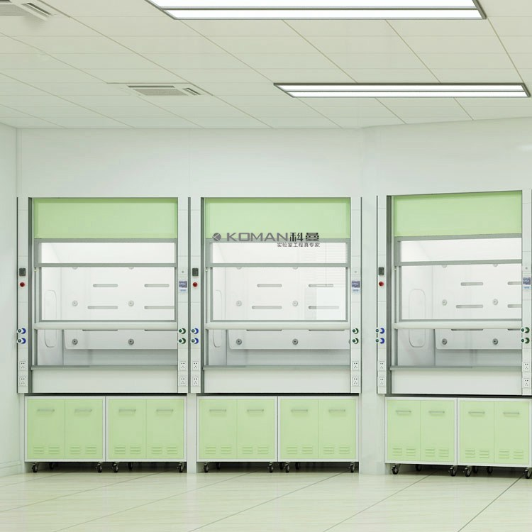 China Manufacturer of All Steel Bio Lab Gas Fume Hood for Chemistry Lab